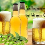 Found key ingredient in Beer that fight against Cancer