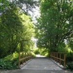 Study says, People living around parks and green will see reduction of chronic diseases