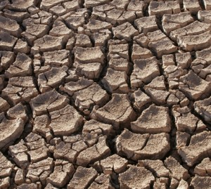 Drought in India