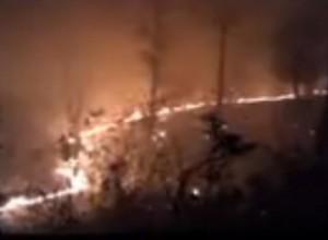 Uttarakhand Forest Fires